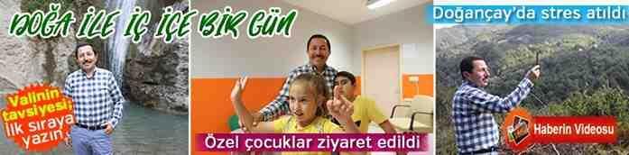 Vali Balkanlıoğlu,  Doğançay'da