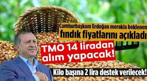 Cumhurbaşkanı Erdoğan; Fındık Fiyatlarını Açıkladı