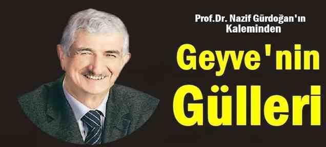 Prof.Dr. Nazif Gürdoğan'ın Kaleminden Geyvenin Gülleri