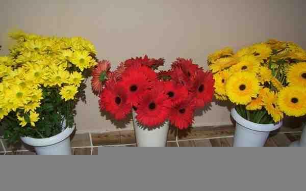 Çiçekçiler Yılbaşına Hazır