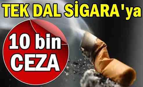 Tek Dal Sigara'ya 10 Bin TL Ceza….