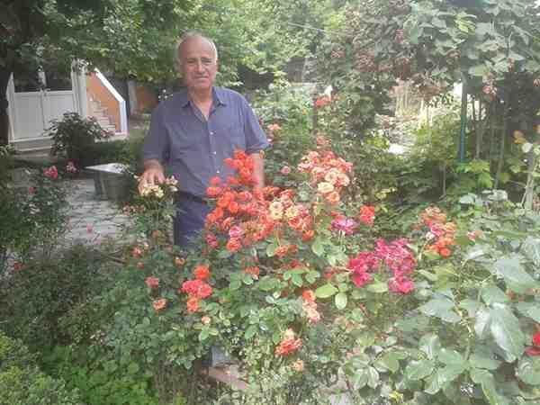 İrem Bahçesi