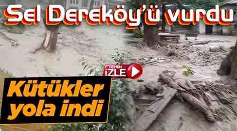Geyve Dereköy'ü SEl Vurdu
