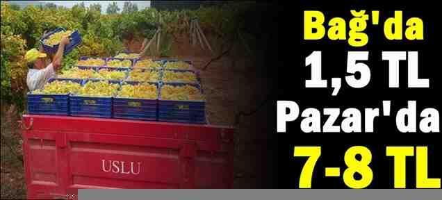 Üzüm Bağda 1,5 TL, Pazar'da 7-8 TL…