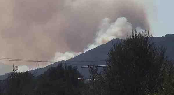 Komşu'da Orman Yangını