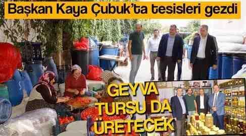 GEYVA Turşu'da Üretecek
