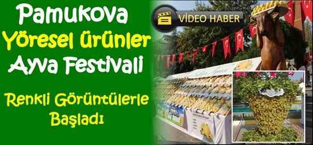 Pamukova Ayva Festivali Renkli Görüntülerle Başladı